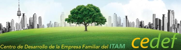 CEDEF Centro de Desarrollo de la Empresa Familiar
